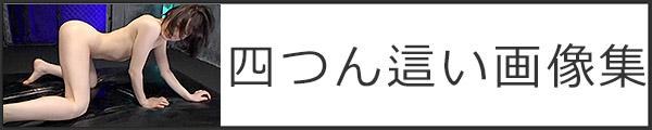 ban_600_120_1