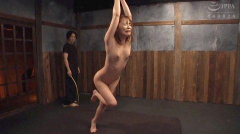 一本鞭調教される女のSM画像 花咲いあん -SMJP