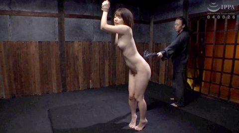 立ち縛りでSM鞭調教される女の画像 麻里梨夏-SMJP