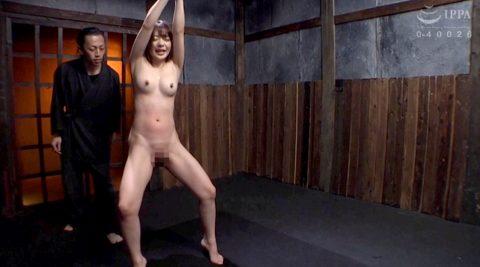 SM調教で立ち縛りにされて 腹部が真っ赤になるまで鞭打たれる女の画像 麻里梨夏-SMJP