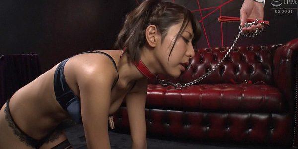 首輪女子、首輪をされて鎖をつけられ調教される女の画像 春咲りょう