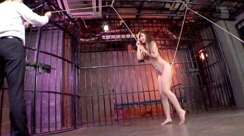 メタル鉤フックW挿入されて引き上げられて引き裂かれる拷問SMを受ける女の画像 神ユキ/SMJP